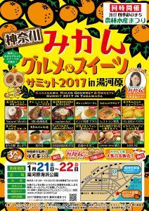 flyer_menu