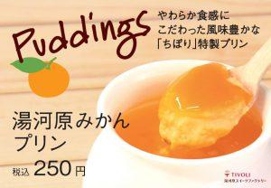 mikan_pudding